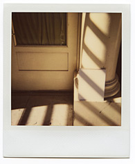 New York City Polaroid Project Image 016