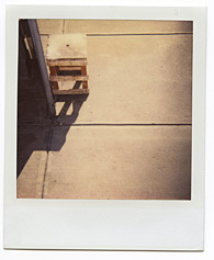 New York City Polaroid Project Image 028