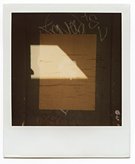 New York City Polaroid Project Image 071