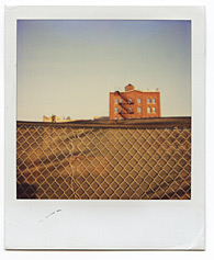 New York City Polaroid Project Image 101