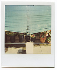 New York City Polaroid Project Image 107