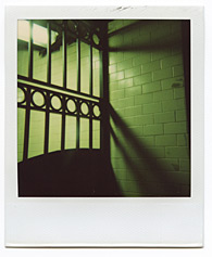 New York City Polaroid Project Image 109