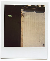 New York City Polaroid Project Image 111