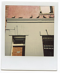 New York City Polaroid Project Image 120