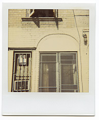 New York City Polaroid Project Image 137