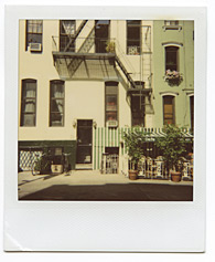 New York City Polaroid Project Image 141