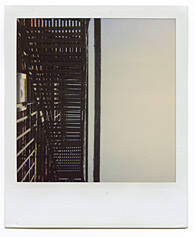 New York City Polaroid Project Image 145