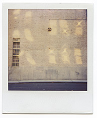 New York City Polaroid Project Image 146