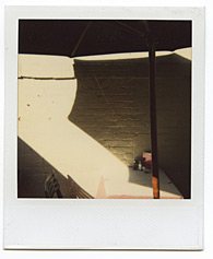 New York City Polaroid Project Image 147