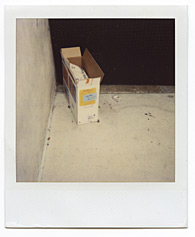 New York City Polaroid Project Image 164
