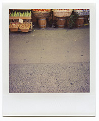 New York City Polaroid Project Image 169