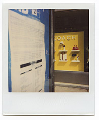 New York City Polaroid Project Image 176
