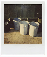 New York City Polaroid Project Image 196