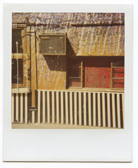 New York City Polaroid Project Image 197